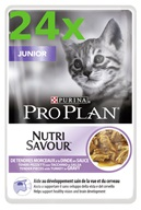 PRO PLAN Cat kaps. Junior Turkey 24 x 85 g