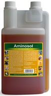 Aminosol sol 1000ml - Rekonvalescence
