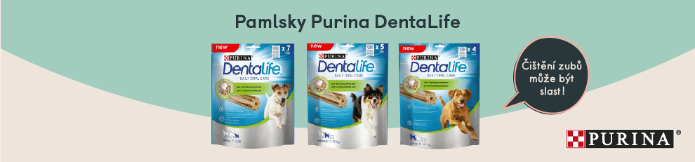 vp-banner-dentalife
